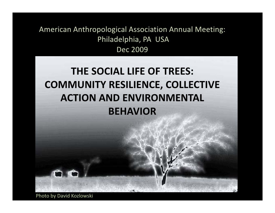 American Anthropological Association Annual Meeting:                 Philadelphia, PA  USA                       Dec 2009 ...