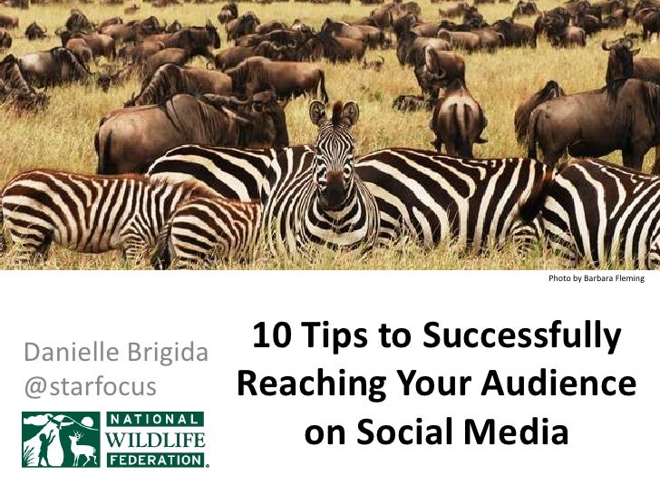 Photo by Barbara FlemingDanielle Brigida    10 Tips to Successfully@starfocus         Reaching Your Audience              ...