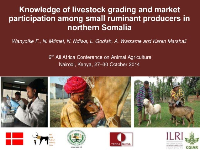 Knowledge of livestock grading and market  participation among small ruminant producers in  northern Somalia  Wanyoike F.,...