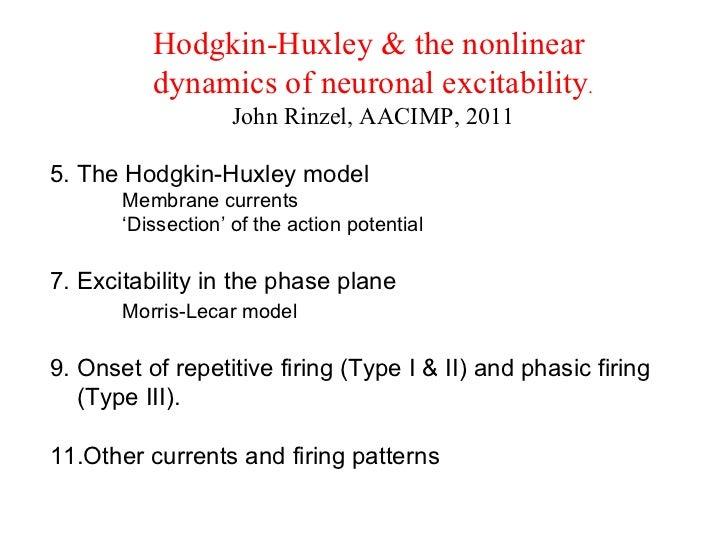 <ul><li>Hodgkin-Huxley & the nonlinear  </li></ul><ul><li>dynamics of neuronal excitability . </li></ul><ul><li>John Rinze...