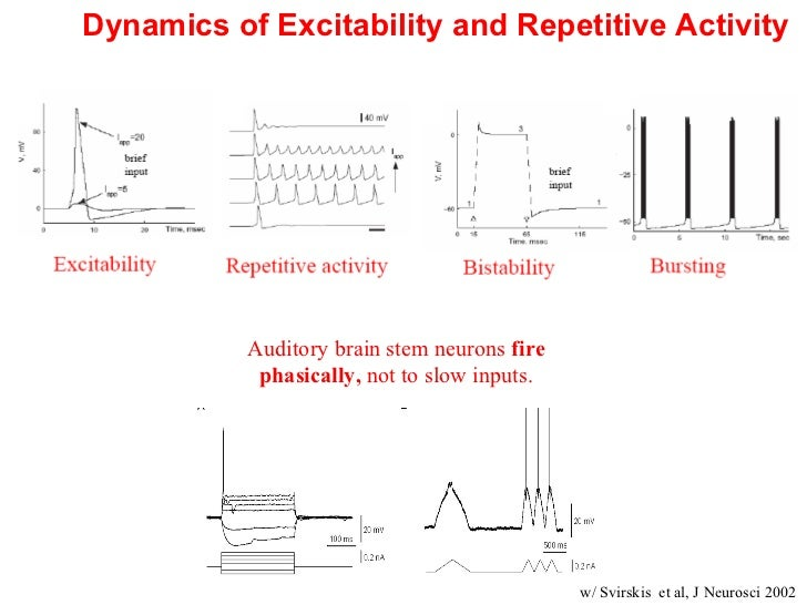 ... 4. Dynamics Of Excitability ...