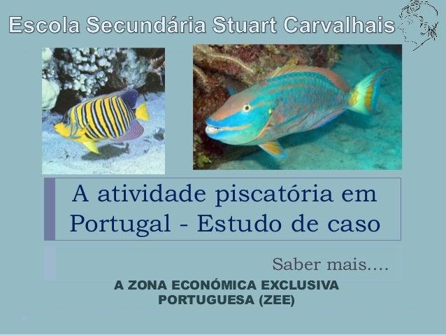 A atividade piscatória emPortugal - Estudo de caso                     Saber mais….   A ZONA ECONÓMICA EXCLUSIVA        PO...