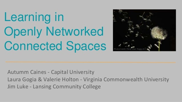 Autumm Caines - Capital University Laura Gogia & Valerie Holton - Virginia Commonwealth University Jim Luke - Lansing Comm...
