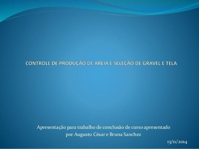 Apresentação para trabalho de conclusão de curso apresentado por Augusto César e Bruna Sanchez 13/11/2014