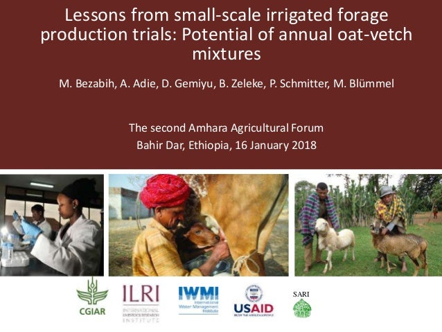 Lessons from small-scale irrigated forage production trials: Potential of annual oat-vetch mixtures M. Bezabih, A. Adie, D...