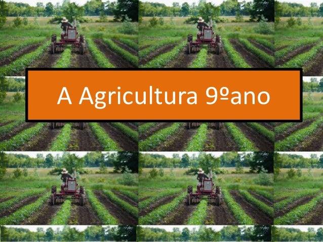 A Agricultura 9ºano