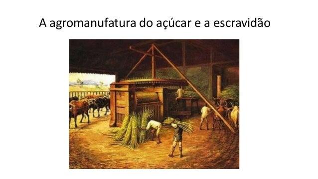 A agromanufatura do açúcar e a escravidão