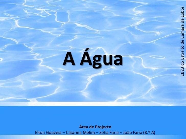 A Água<br />EB23 do Estreito de Câmara de Lobos<br />Área de Projecto<br />Elton Gouveia – Catarina Melim – Sofia Faria – ...