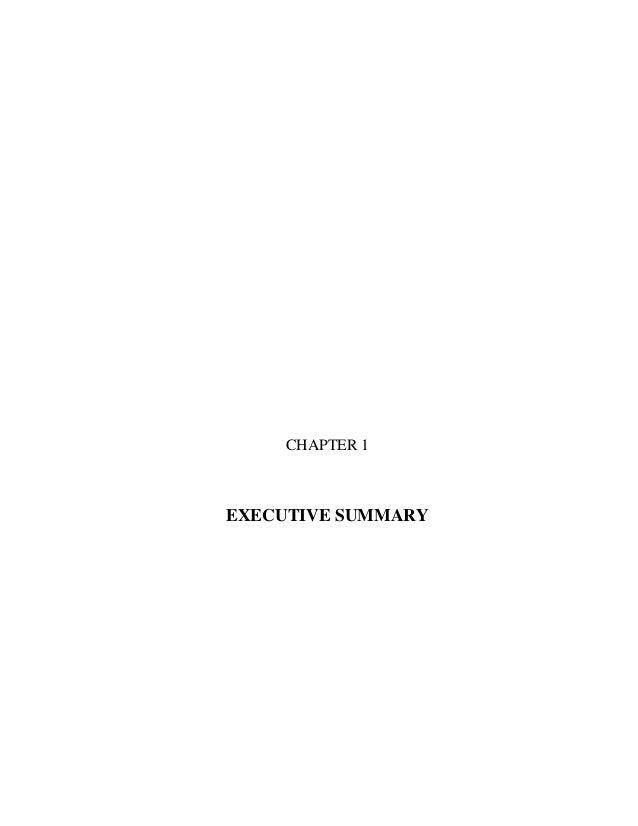 CHAPTER 1 EXECUTIVE SUMMARY