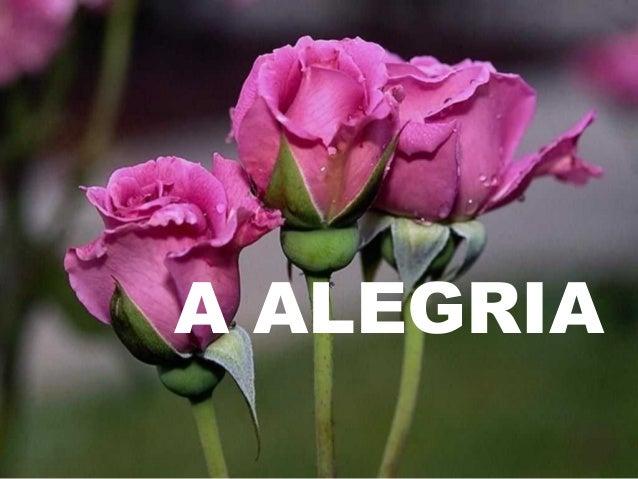 A ALEGRIA