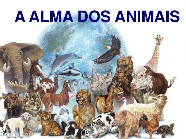 A alma dos animais   slide