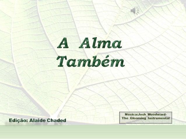 A  Alma Também  - André Luís