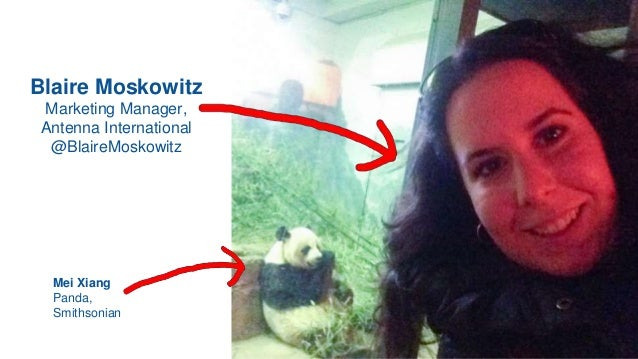 Blaire Moskowitz Marketing Manager, Antenna International @BlaireMoskowitz Mei Xiang Panda, Smithsonian