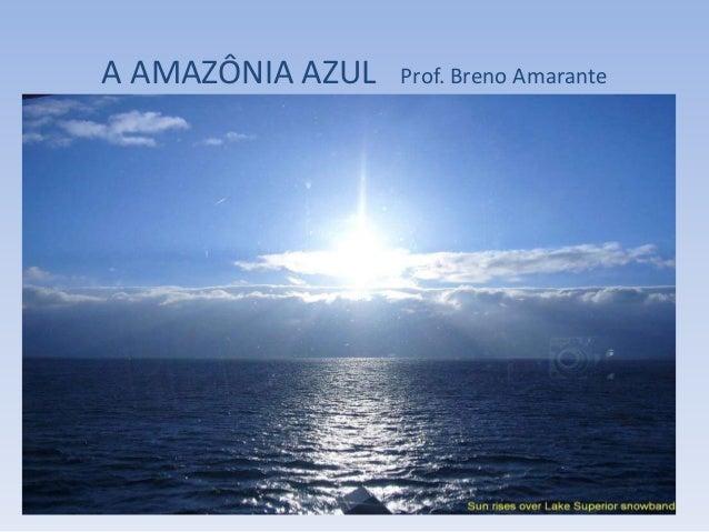 A AMAZÔNIA AZUL Prof. Breno Amarante