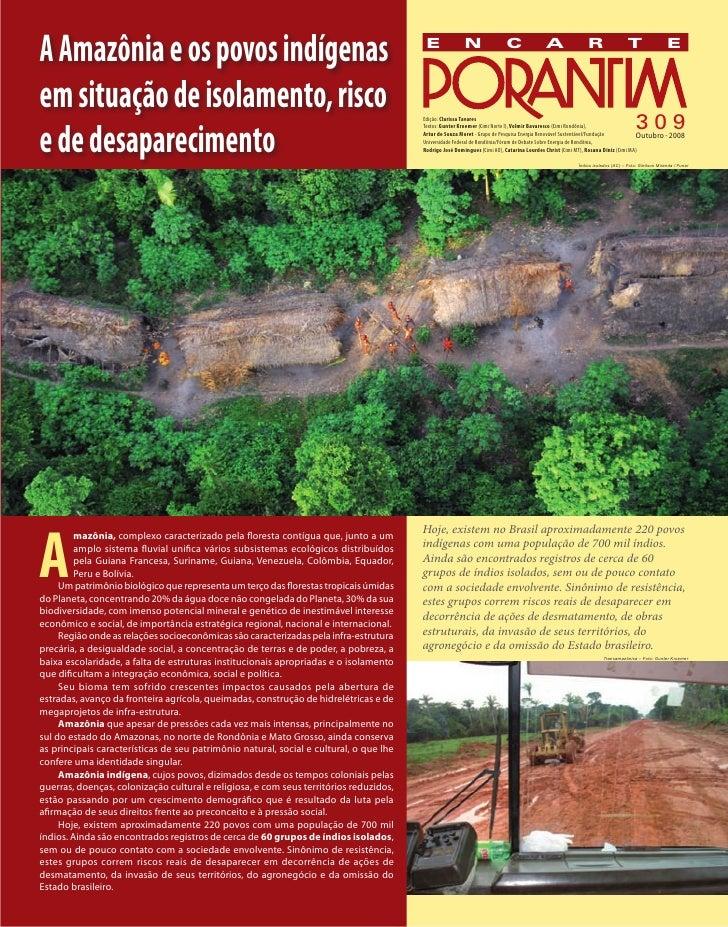 A amazônia e os povos indígenas isolados