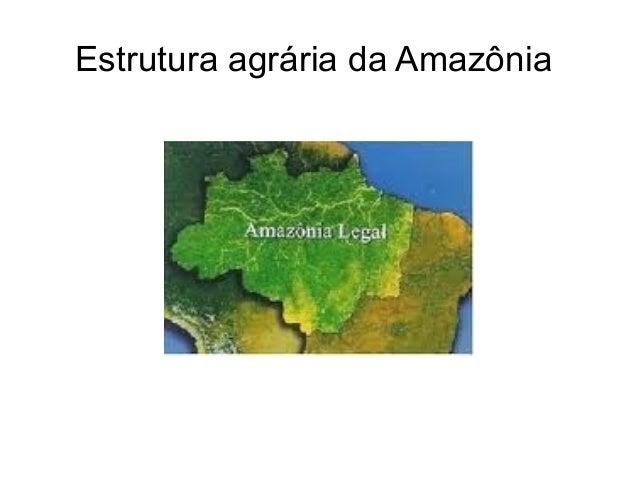 Estrutura agrária da Amazônia