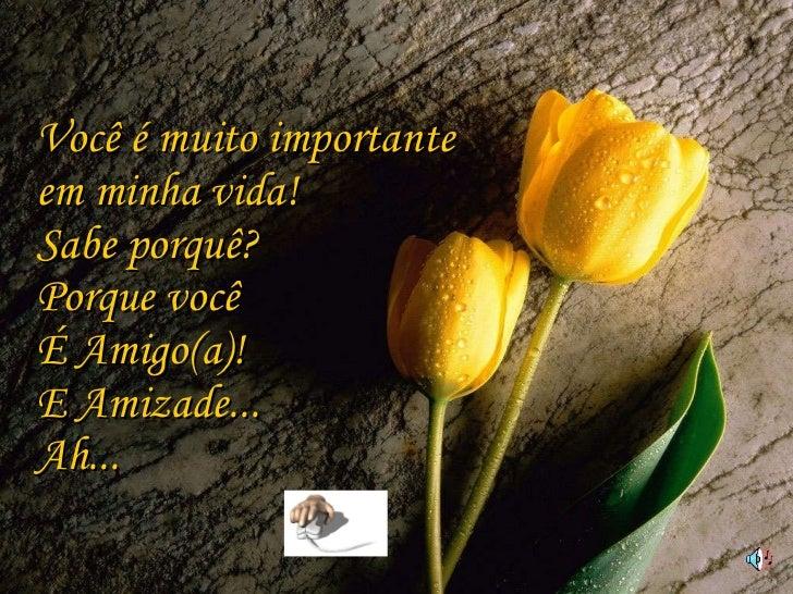 Você é muito importante  em minha vida! Sabe porquê? Porque você  É Amigo(a)! E Amizade... Ah...