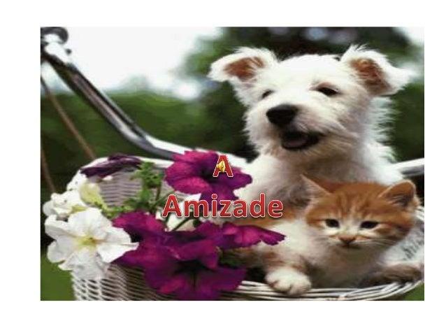 A amizade é mais do que uma simples palavra que aparece no dicionário é um sentimento irresistível .. É um sentimento Que ...