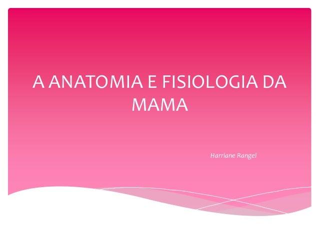 A ANATOMIA E FISIOLOGIA DA MAMA Harriane Rangel