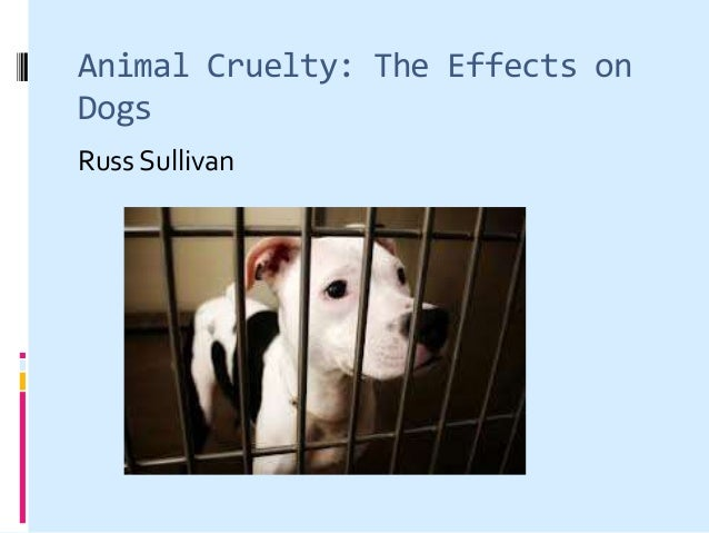 Animal Cruelty: The Effects onDogsRuss Sullivan