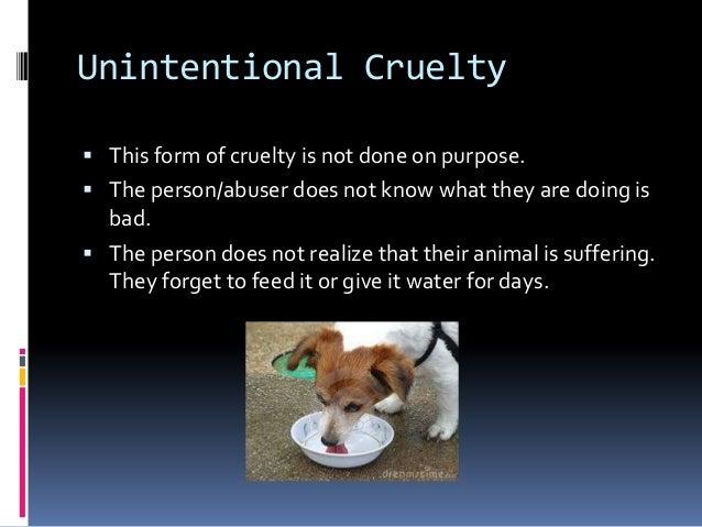 effects of animal cruelty