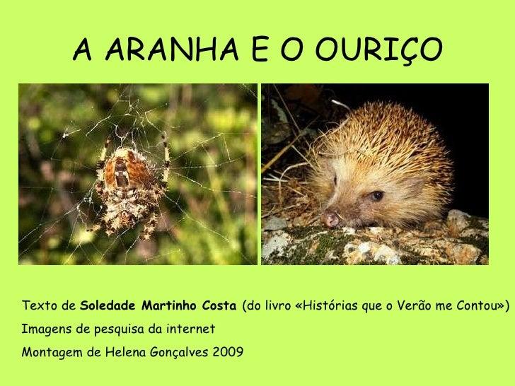 A ARANHA E O OURIÇO Texto de  Soledade Martinho Costa  (do livro «Histórias que o Verão me Contou») Imagens de pesquisa da...
