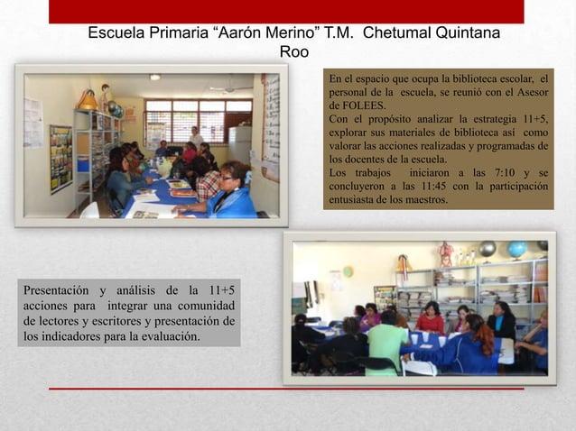 "Escuela Primaria ""Aarón Merino"" T.M. Chetumal Quintana                                     Roo                            ..."