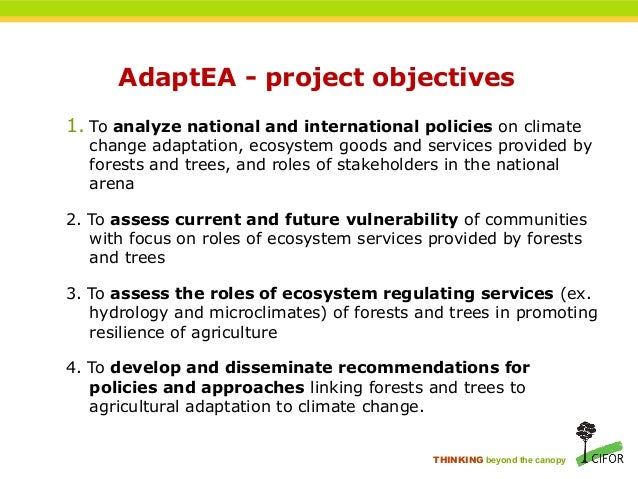 THINKING beyond the canopy AdaptEA - project objectives 1. To analyze national and international policies on climate chang...
