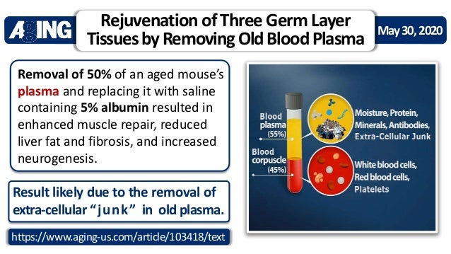 Unified Theory of Stem Cell Rejuvenation