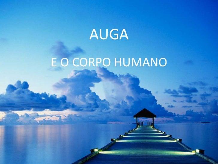 AUGA<br />E O CORPO HUMANO<br />