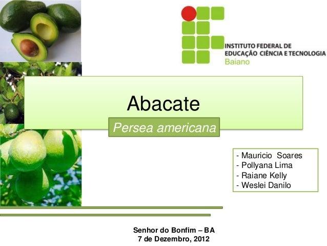 Abacate Persea americana Senhor do Bonfim – BA 7 de Dezembro, 2012 - Mauricio Soares - Pollyana Lima - Raiane Kelly - Wesl...