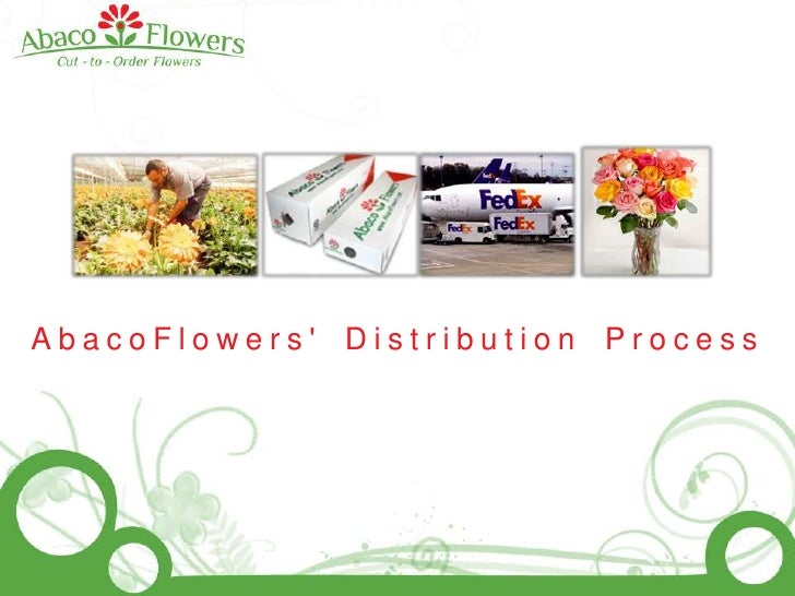 AbacoFlowers' Distribution Process<br />
