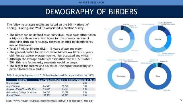 American Birding Association Digital Marketing Analysis Report