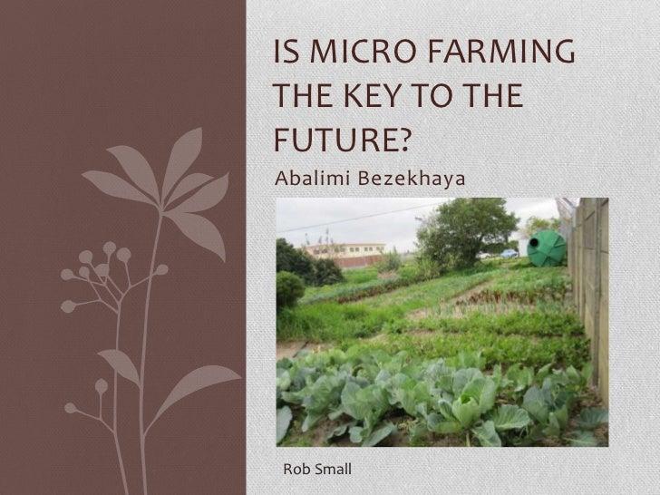 IS MICRO FARMINGTHE KEY TO THEFUTURE?Abalimi BezekhayaRob Small