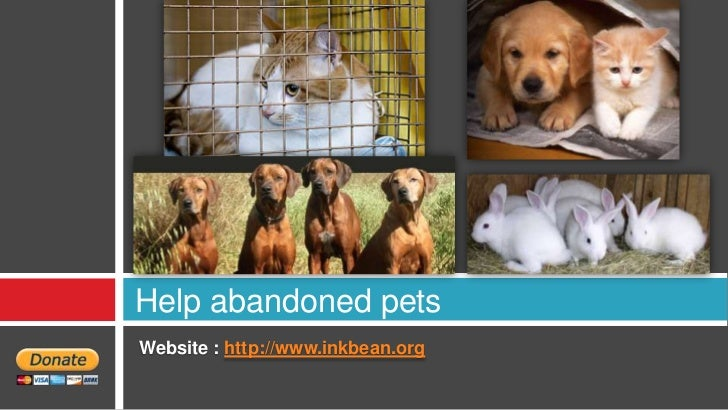 Help abandoned petsWebsite : http://www.inkbean.org