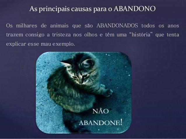 { As principais causas para o ABANDONO Os milhares de animais que são ABANDONADOS todos os anos trazem consigo a tristeza ...