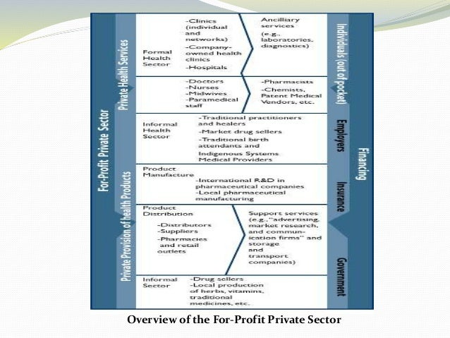 Overview of the For-Profit Private Sector