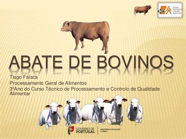 ABATE DE BOVINOS Tiago Faísca Processamento Geral de Alimentos 3ºAno do Curso Técnico de Processamento e Controlo de Quali...