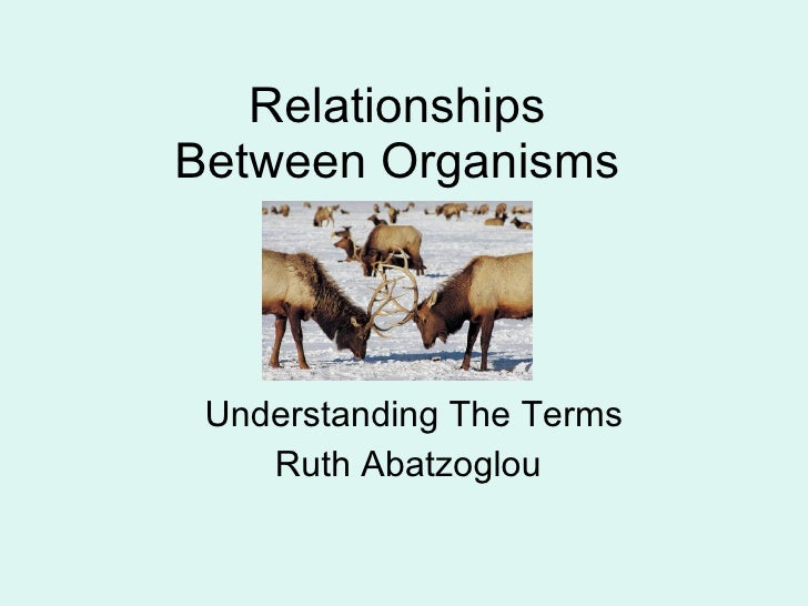 Relationships Between Organisms Understanding The Terms Ruth Abatzoglou