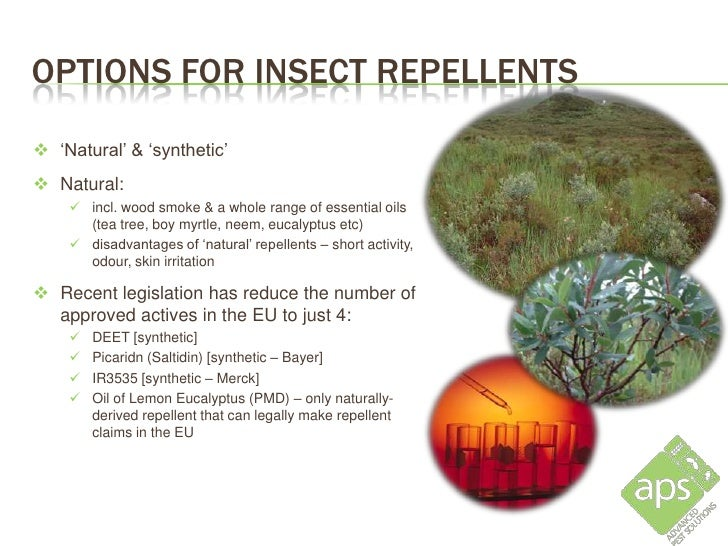 OPTIONS FOR INSECT REPELLENTS 'Natural' & 'synthetic' Natural:     incl. wood smoke & a whole range of essential oils  ...