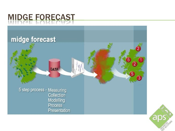 MIDGE FORECAST         The forecast output is verified by a network of midge traps,         operated by volunteers, weekly...
