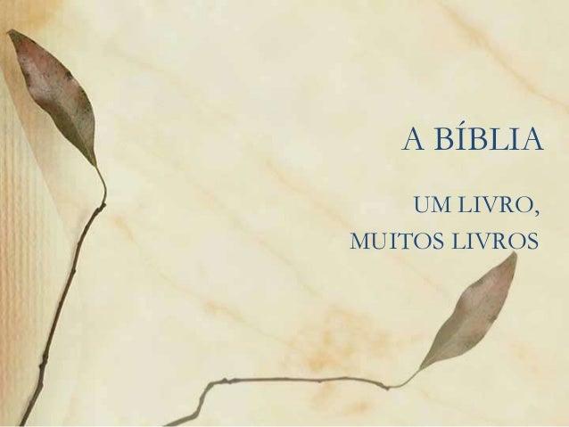 A BÍBLIA  UM LIVRO,  MUITOS LIVROS