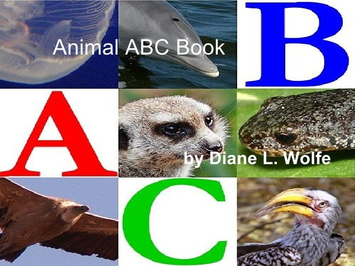 Animal ABC Book by Diane L. Wolfe