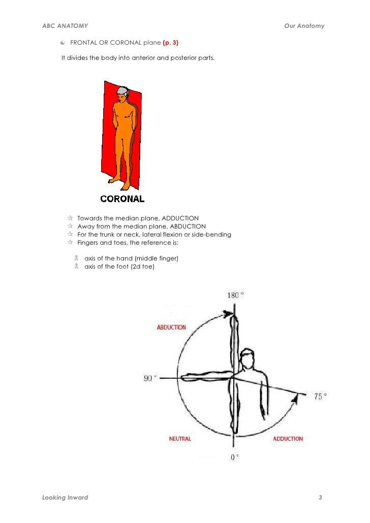 abc-anatomy-3-728.jpg?cb=1318394869