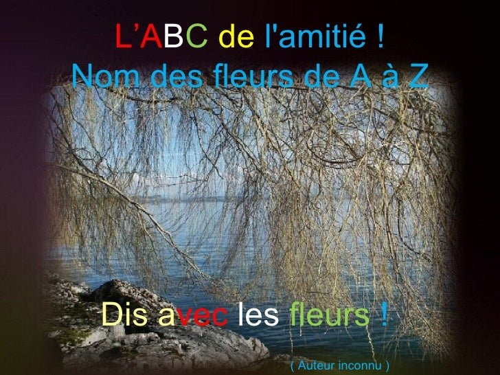 L'ABC de lamitié !Nom des fleurs de A à Z Dis avec les fleurs !              ( Auteur inconnu )