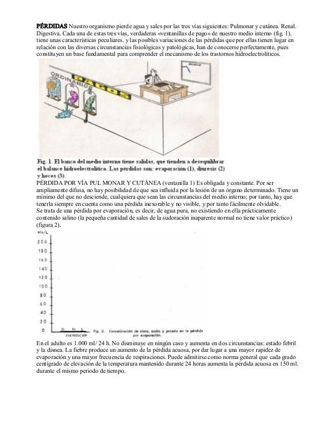Abc de los liquidos y electrolitos. rotellar Slide 3