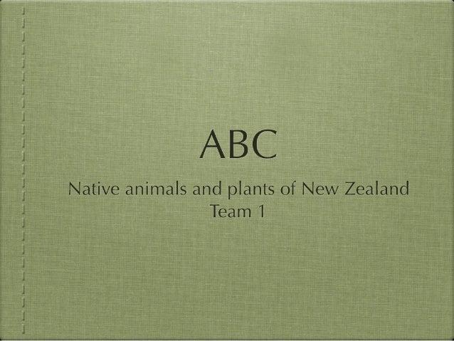 ABC  Native animals and plants of New Zealand Team I