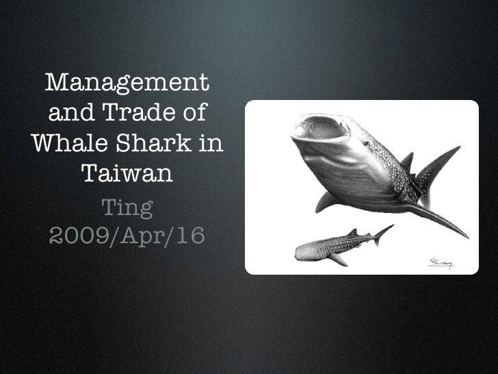 Management and Trade of Whale Shark in Taiwan <ul><li>Ting </li></ul><ul><li>2009/Apr/16 </li></ul>