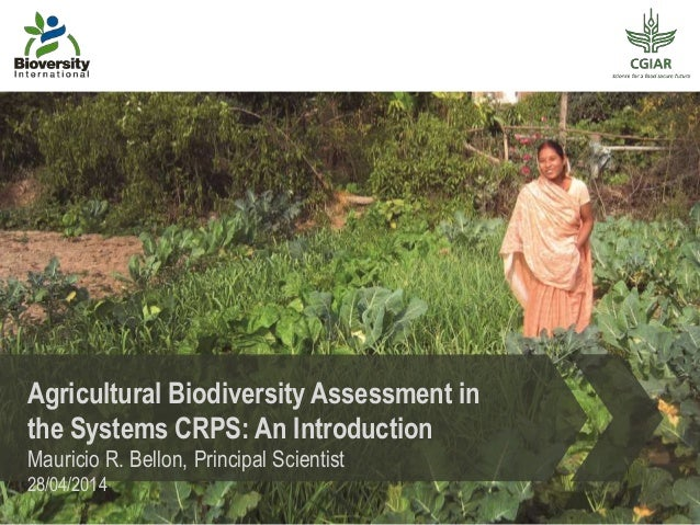 Agricultural Biodiversity Assessment in the Systems CRPS: An Introduction Mauricio R. Bellon, Principal Scientist 28/04/20...