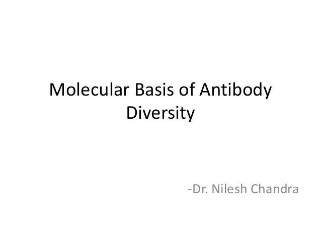 Molecular Basis of Antibody Diversity -Dr. Nilesh Chandra